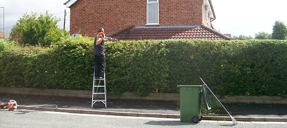 Hedge cutting in Stockport